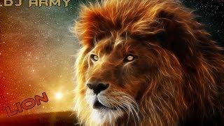 Dj Army -  Lion 2014