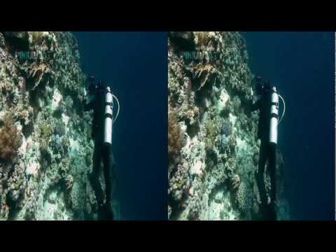 Oceandive 3D - Pinkau 3D Entertainment - FULL Documentary