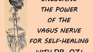 UNLOCKING POWER OF THE VAGUS NERVE with Dr. Oz