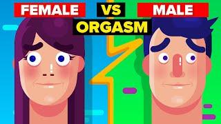 Female Orgasm vs Male Orgasm - How Do They Compare?