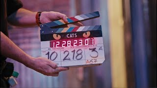 CATS - A Look Inside HD