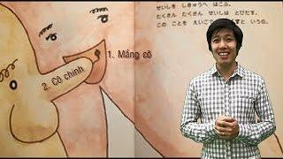 # 4 - Học tiếng nhật online - Bộ phân XYZ nói như thế nào trong tiếng Nhật
