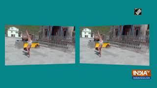 Watch: Kedarnath Temple priest walks on his hands on Inter..