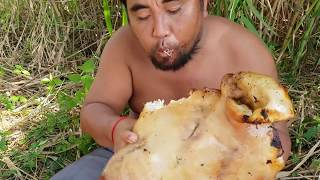 Primitive Technology - take head pig      - take to burn with cabbage  eating delicious