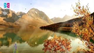 Reiki Music, Relaxing Meditation Music, Chakra, Stress Relief Music.