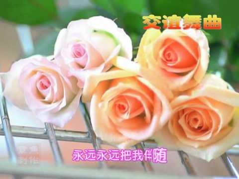 心中的玫瑰.AVI