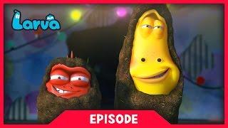 LARVA - FASHION SHOW | Cartoon Movie | Cartoons For Children | Larva Cartoon | LARVA Official