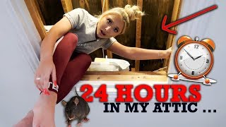 24 hours in my TINY attic .. * The fright of my life *