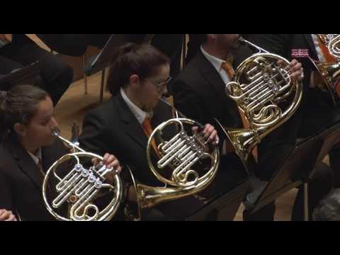 SOCIEDAD ARTÍSTICO MUSICAL DE PICASSENT - Certamen Provincial de Valencia 2017