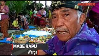 Tradisi mamunjung dilakukan di Setra Pengaji, Payangan Gianyar, Rabu(11/12).