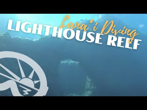 """Lighthouse Reef"" on Lanai with Extended Horizons Scuba, Maui, Hawaii"