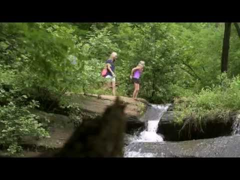 Rockingham County, NC Tourism Commercial