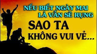 Nếu biết ngày mai lá vẫn sẽ rụng SAO TA KHÔNG...  - Thiền Đạo