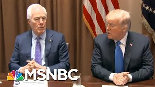 'Complicit': Heitkamp On Sen. Cornyn, Republicans Jumping Ship As Trump Polls Sink | All In | MSNBC