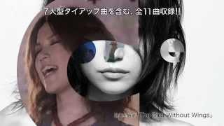 アルバムCM6