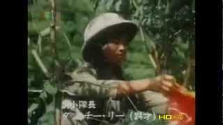 Việt Nam Tuyến Lửa (Nhật Bản SX) - Phim Xúc Động Nhất Về Dân Quân - TNXP