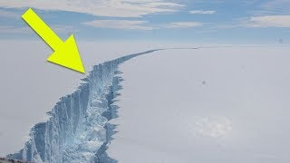 This Enormous Ice Shelf Has Broken Up – And It's Revealed A Mysterious Primeval Ecosystem
