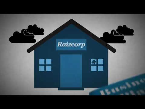 How Raizcorp Can Help You
