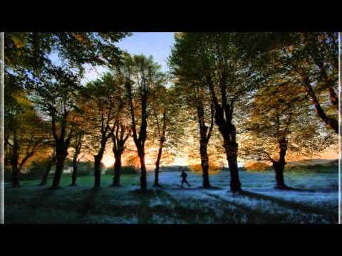 Richard Durand feat. Hadley - Run to You (Orjan Nilsen Trance Mix)