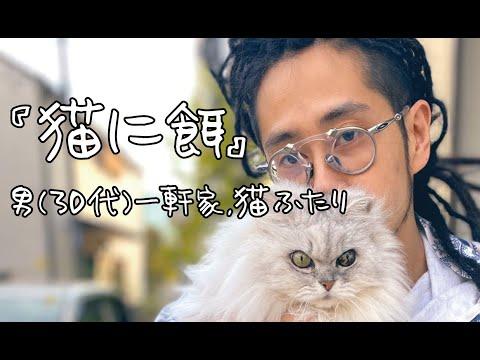 【猫に餌】男(30代)一軒家,猫ふたり