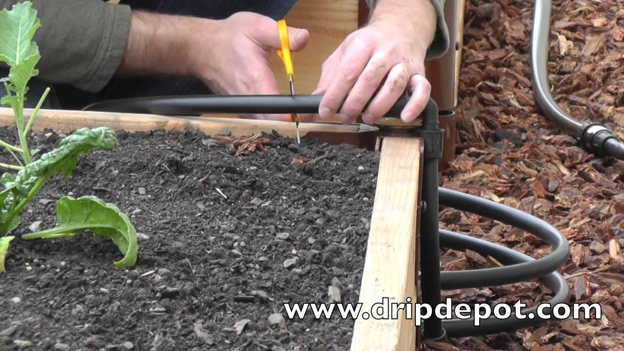 How To Install A Drip Irrigation System In Raised Beds