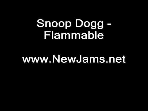 Snoop Dogg - Flammable (NEW SONG 2011)