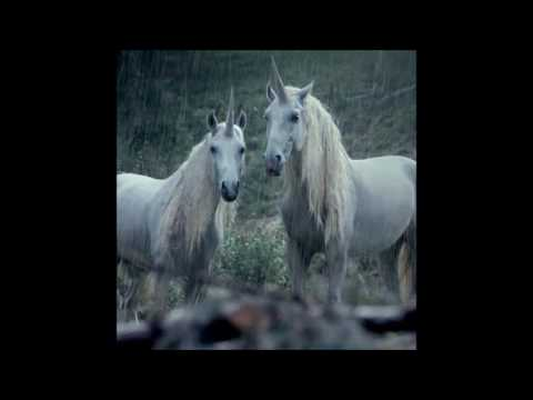 Lil Peep x Horse Head - Right Here