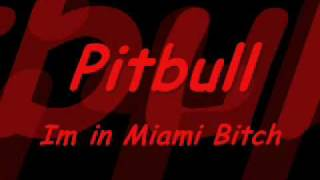 Pitbull - Im in Miami Bitch (Dj Thomas Sena)
