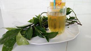 Ẩm Thực Việt Nam ❤️/ Cách làm trà xanh không độ từ lá CHÈ XANH❤️