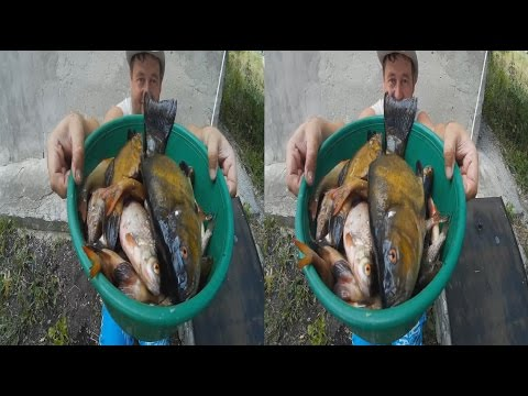 Fishermen 3D ! Big Catch FISH !3D VIDEO