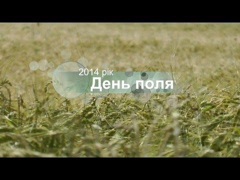 День поля 2014 от Syngenta