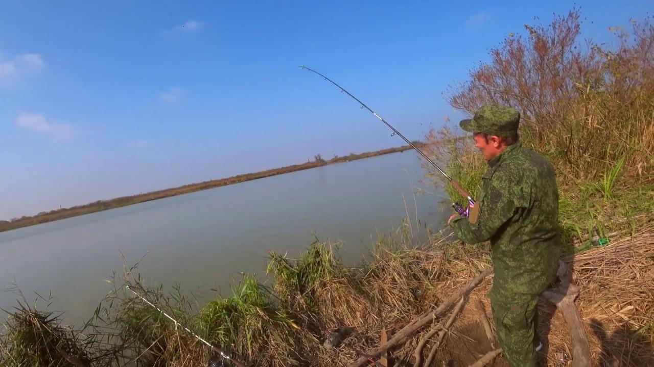 Ловля рыбы на кубани сегодня