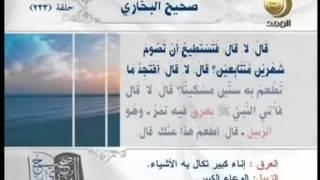 صحيح البخاري - باب إذا جامع في رمضان