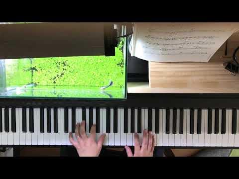 キャンディ CANDY 簡単なことしかせずに弾く  アドリブなし(初心者) ジャズソロピアノ  黒本の曲を弾く