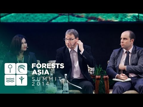 Forests Asia Summit 2014 – Day 2, The role of the private sector in delivering green growth