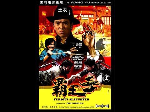 王羽電影《霸王拳》陈莎莉 苗天  主演 丁善玺導演  懷舊功夫片 1972