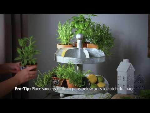 Fresh Idea! Indoor Herb Garden