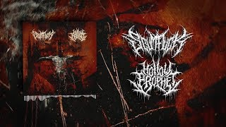 HOLLOW PROPHET / SCUMFUCK - SPLIT [OFFICIAL STREAM] (2018) SW EXCLUSIVE
