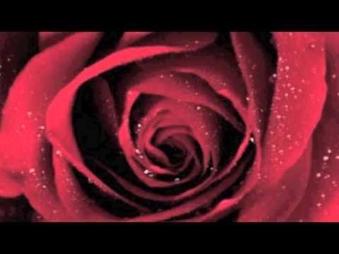 La oreja de van gogh, Rosas con letra