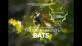 The Truth About Bats (Full Documentary)