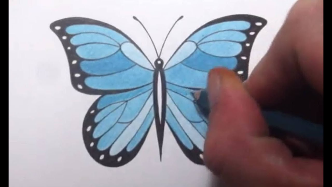 How To Draw a Butterfly - YouTube