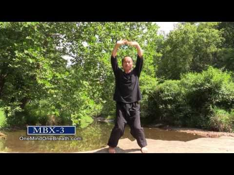Mindful Movement & Deep Breathing Exercises (MBX-12) — Sang
