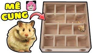 MỀU THỬ THÁCH CHUỘT HAMSTER TRỐM THOÁT KHỎI MÊ CUNG*MAZE FOR HAMSTER*Chuột Hamster Của Mều