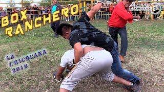BOX RANCHERO LA CHICOCANA 2019 SEGUNDA PARTE (DAVID V.S GOLIAT FINAL INESPERADO)