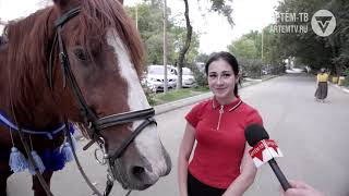 Конь по имени Закал