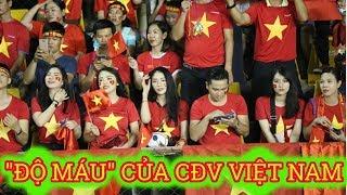 Báo Hàn Quốc hào hứng với ĐỘ MÁU của CĐV Việt Nam nhưng Đại sứ quán đưa ra lời cảnh báo - News Tube