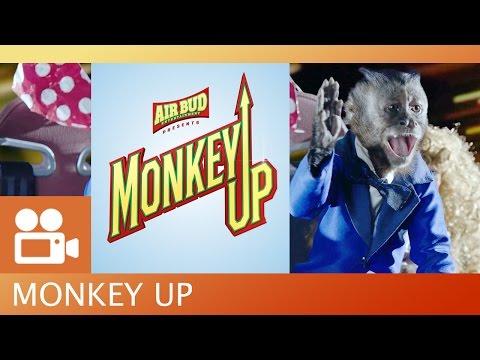 Monkey Up Trailer