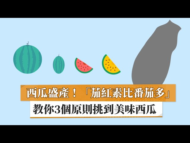 西瓜盛產!「茄紅素比番茄多」 教你3個原則挑到美味西瓜