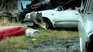 Wallander 'Dogs' - Directed by Toby Haynes