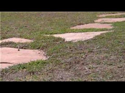 Flagstone Path Through Lawn